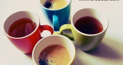 terleyenler için doğal çay, doğal çay ile terlemeye çözüm, aşırı terleme için çay